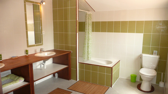Stunning Separation Baignoire Wc Pictures - Awesome Interior Home ...