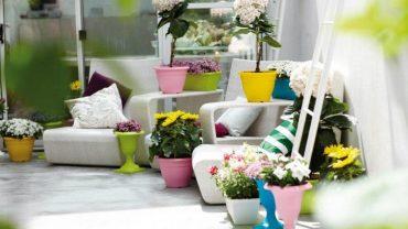 des astuces pour la d coration int rieure jardin. Black Bedroom Furniture Sets. Home Design Ideas